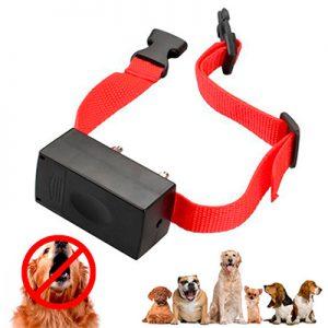 Collar eléctrico de adiestramiento para perro